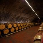 Casa Fusina (Dogliani) – Colline Unesco: Canelli – Cattedrali Sottoerranee – Cantine Coppo