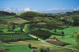 Casa Vacanze Fusina (Dogliani) – Primavera a Bossolasco