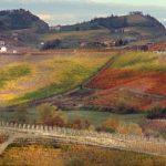 Casa Vacanze Fusina  – Dogliani Valdibà in autunno