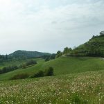 Casa Vacanze Fusina (Dogliani) – Primavera in Alta Langa