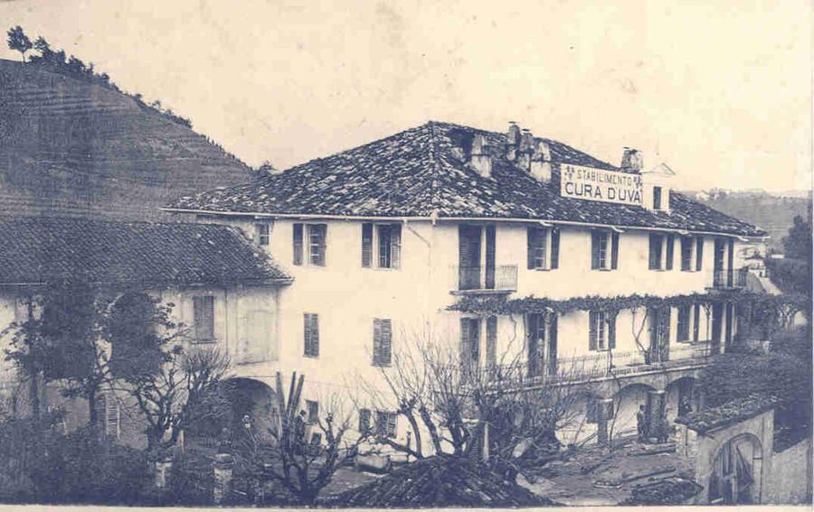Casa Vacanze Fusina - Dogliani: stabilimento cura dell'uva