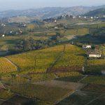 Casa Vacanze Fusina (Dogliani) – Autunno sui colli