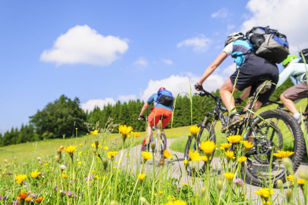 Casa Vacanze Fusina (Dogliani) - nelle Langhe in bicicletta