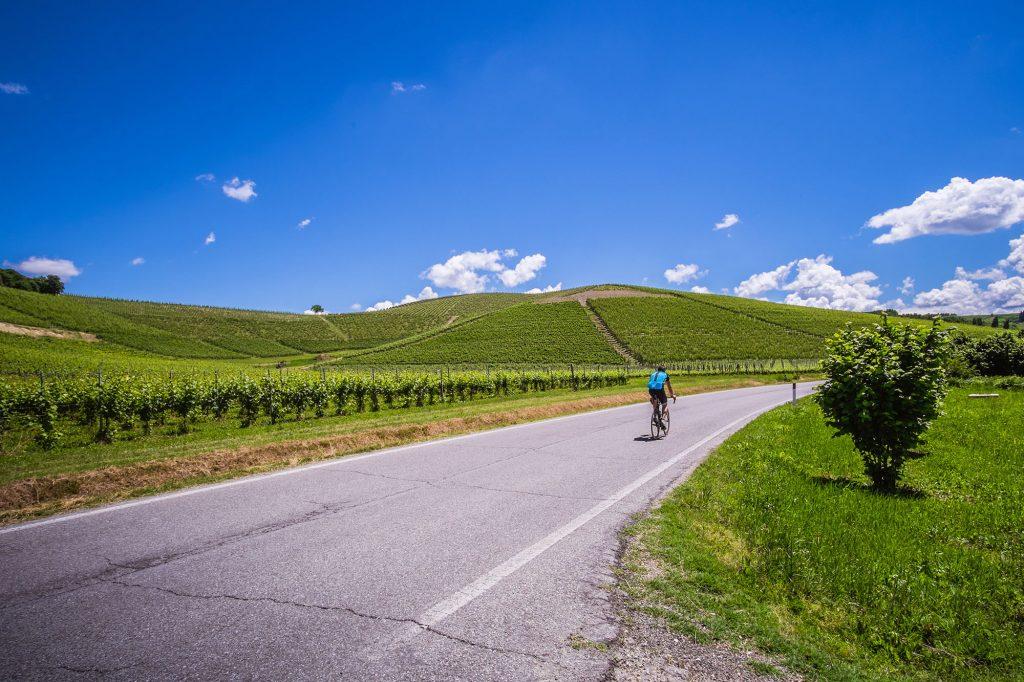 Casa Vacanze Fusina (Dogliani) -Ciclista pedala su strada nelle colline delle langhe