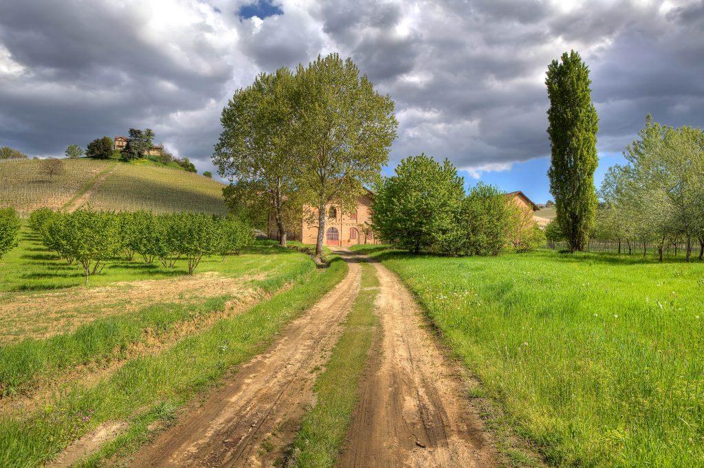 Casa Vacanze Fusina (Dogliani) - Cascina